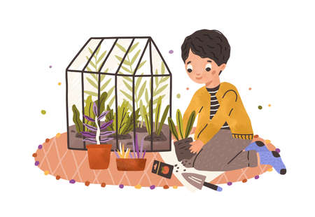Boy growing green plants in pots and care about kitchen-garden. Happy smiling child and his greenhouse. Kid farmer at organic plantation. Colored flat vector illustration isolated on white background