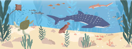 Underwater life of fishes at sea bottom. Wild animals swimming under water. Undersea landscape with exotic habitats and seaweeds. Seascape with marine inhabitants. Colored flat vector illustration Ilustrace