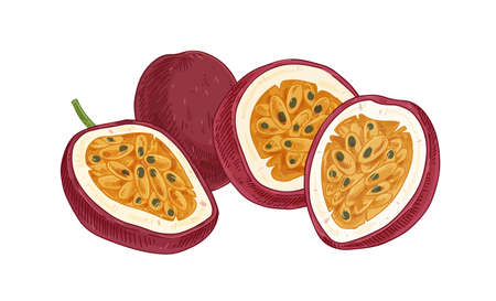Ripe pulpy passion fruits isolated on white. Juicy sweet flesh with seeds of ripened passionfruit halves. Exotic maracuja composition in retro style. realistic hand-drawn vector illustration