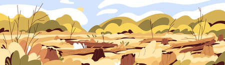 Deforestation and forest devastation concept. Landscape of drought in deserted wood with felled trees. Dead nature scenery with dry trunks and stumps. Flat vector illustration of ecology disaster