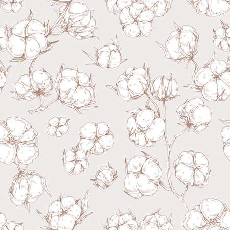 Seamless botanical pattern with outlined soft fluffy cotton flower branches. Design of endless repeatable natural background in vintage style. Detailed hand-drawn vector illustration for printing.