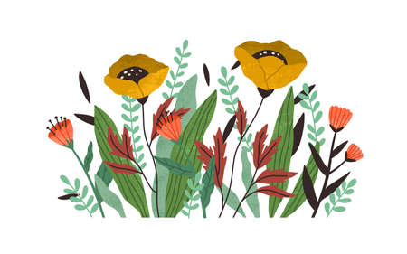 Blooming autumn flowers with blossomed buds and leaf. Modern botanical border for decoration. Beautiful delicate wildflowers. Textured flat vector illustration isolated on white background Ilustração Vetorial