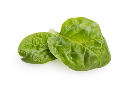pair of fresh spinach leaves, isolated on white photo