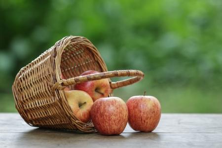 overturned: gala apples in a wicker basket, on wooden table