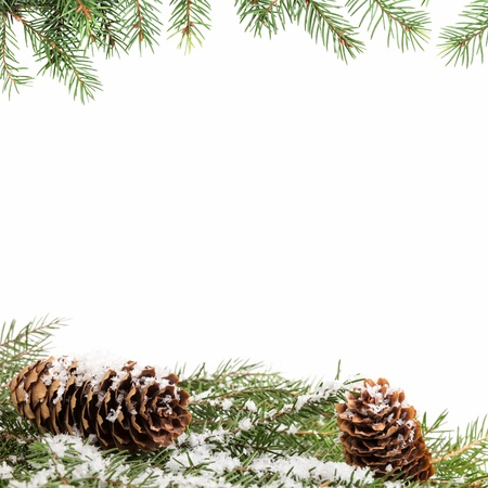 christmas ornament background with fir branches, white background Stock Photo