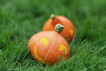 two Halloween pumpkins walking on grass, horizontal photo