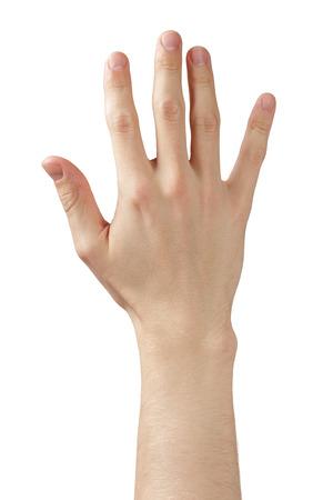 l'homme adulte main montrant cinq doigts, isolé sur blanc