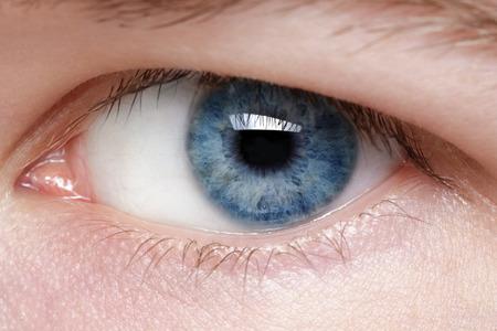 close up eyes: blue eye of young man, close up macro photo