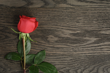 Romantic background with red rose on wood table