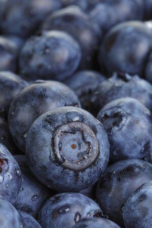 washed: fresh washed wet blueberries, close up photo