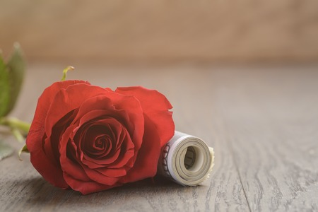 red bills: single red roses and bunch of dollar bills, vintage toned Stock Photo