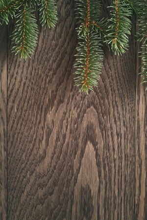 christmas backdrop: christmas fir tree branches on oak wooden background, vintage backdrop