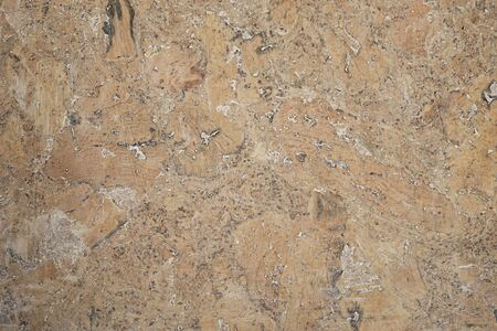 flooring cork: real cork background painted with antique oil, backdrop
