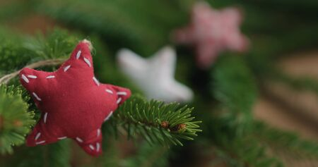Closeup soft fabric christmas stars on spruce branches Banco de Imagens