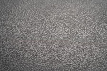 Closeup foto de cuero de plena flor de ceja oscura full garin Foto de archivo