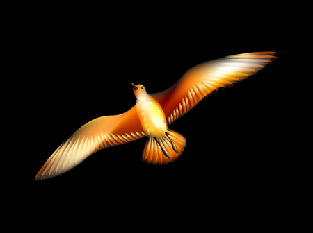 Bird seagull consisting of the flames Phoenix