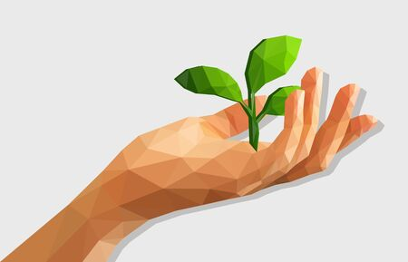 disclosed: polygonal low poly disclosed cupped left hand holds the germ of an isolated tree with leaves Earth Day.