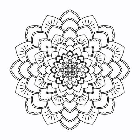 aster: aster flower pattern vector