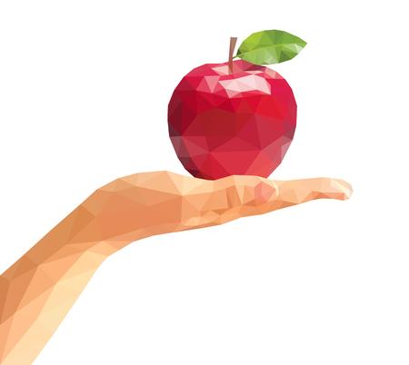 lies: polygonal apple lies on the open polygonal palm