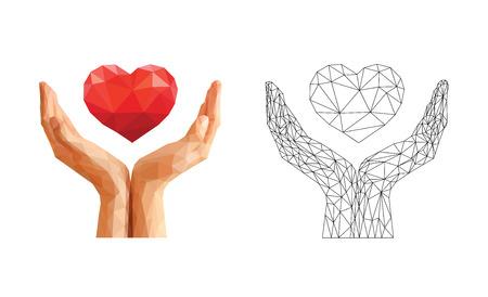 corazon en la mano: manos ahuecadas tienen el corazón flotante y el esqueleto