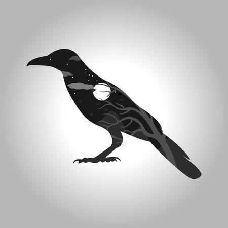 corvo imperiale: finestra nella notte sotto forma di Raven sul grigio