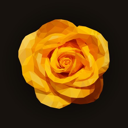 yellow rose: polygonal yellow rose top view completely open on black