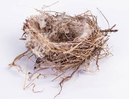 bird nest An empty isolated on white background. Stock Photo