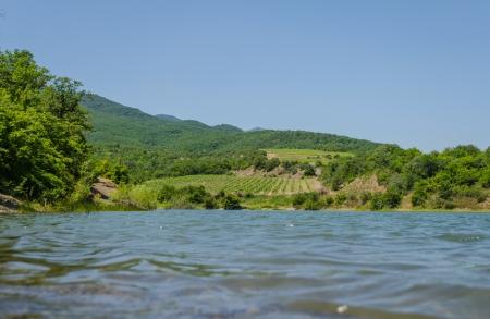 Vineyards in the mountains near the lake  Alushta, Crimea
