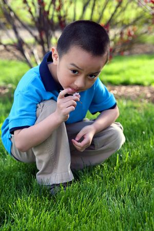 little asian boy crouching outside smelling flower Stock Photo