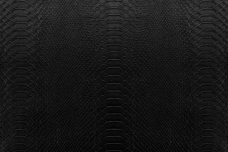 reptile: Texture background of black reptile leather