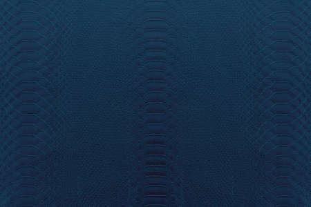 navy blue: Texture background of navy blue reptile leather