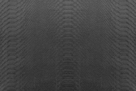 flay: Texture background of gray reptile leather