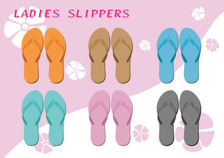 two tone: Ladies slippers on the background two tone color Illustration