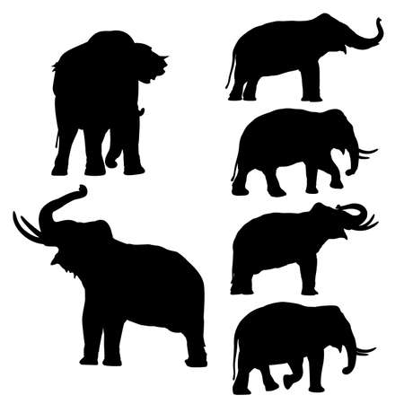black mammoth: Set of editable vector silhouettes of Thai elephants in various poses