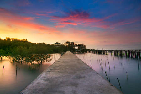 Natural background of route amidst the sea and the mangrove forest and beautiful nature during sunrise ,sunset. Beautiful landscape of Thailand Stock Photo