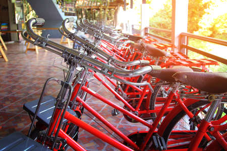 Handlebar of red retro bicycles  for rent parked in row among sunlight in resort at Nakhon Nayok province in Thailand