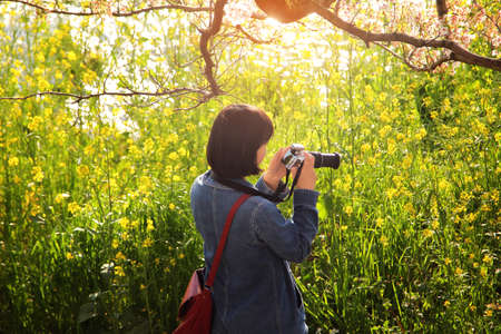 Traveler woman she is travel taking a photo amidst the beautiful scenery of sakura cherry blossom tree at Uruigawa river in Japan. Travel and natural Concept Stock Photo