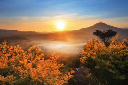 The beautiful of the natural and the mist environment during sunrise and sunset at  (Khao Takhian Ngo View Point ) ,Khao Kho District ,Phetchabun Province in Thailand