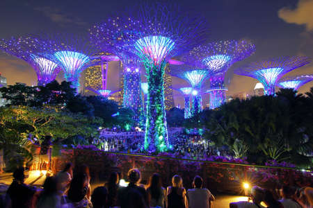 Singapore - July 30, 2017: Supertrees grove in Gardens by the Bay in Singapore center and night light show at Supertree Groveis is main Marina Bay Sands district very popular attraction for tourists. Editorial