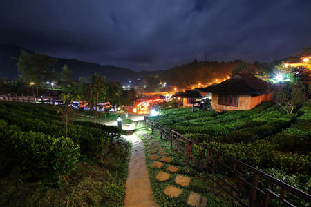 Beautiful scenery during night time at Chinese village among Tea Plantation at Ban Rak Thai , Mae Hong Son in Thailand.This is very popular for photographers and tourists. 写真素材
