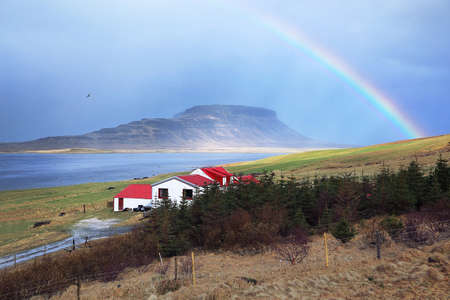 Habitat among beautiful nature surrounded by mountains, grasslands with rainbow in morning time at Iceland. Stock Photo