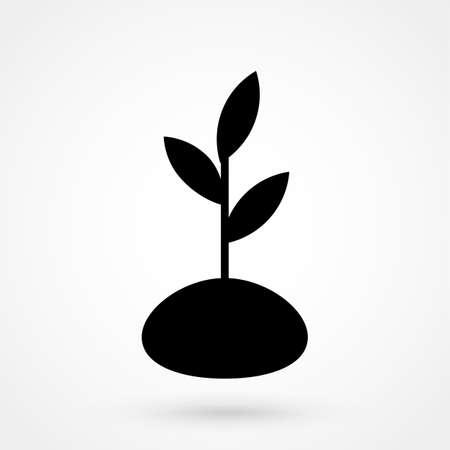 Plant flat icon.