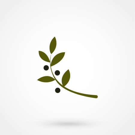 Vector unusual olive branch isolated logo, icon, illustration and symbol template. 矢量图像