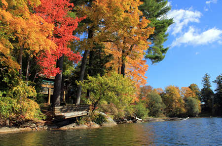 autumn colour: Lake view of fall foliage