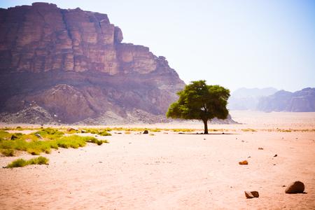 Jordan Scenic