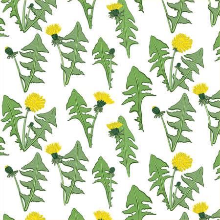 Dandelion flower pattern