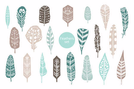 Animal feathers color graphic hand drawing vector set 向量圖像