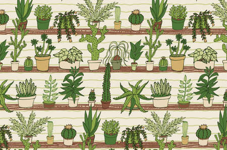 home plants cactus succulent hand drawing vector pattern
