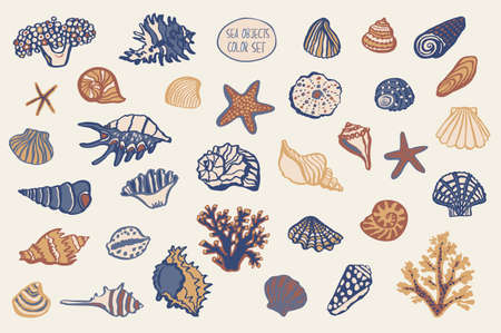 shell undersea world outline vector hand drawing set