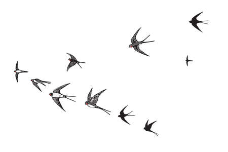remote view: flock of birds silhouette swallow vector illustration